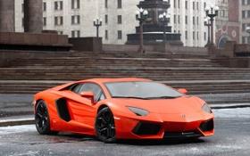 Обои Авто, Lamborghini, Оранжевый, Суперкар, LP700-4, Aventador, Передок