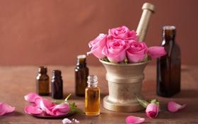 Обои розы, spa, розовые цветы, лепестки, натюрморт, цветы