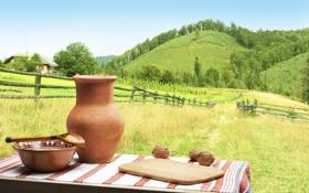 Картинка дорога, трава, пейзаж, стол, холмы, ограда, тарелка