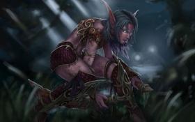 Картинка оружие, арт, эльфийка, Night Elf, wow, крадется, кинжалы