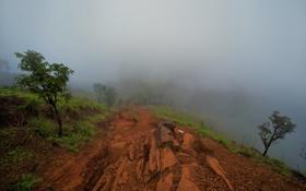 Картинка пейзаж, природа, туман, гора