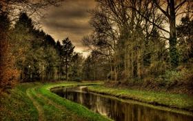 Обои дорога, лес, вода, река, канал