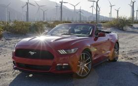 Обои Mustang, Ford, мустанг, форд, Convertible, 2014