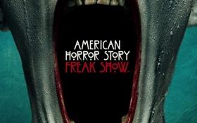 Обои horror, ghost, terror, 2014-2015, bizarre, Freak Show, suspense