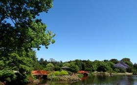 Картинка камни, пруд, небо, голубое, Австралия, беседка, кусты