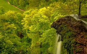 Картинка долина, деревья, водопад, поток, скала, гора