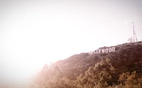 Обои надпись, буквы, холм, hollywood, склон, голливуд