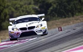 Картинка BMW, Paul Ricard, FIA GT3 2011, Team Need for Speed