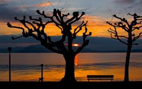 Картинка небо, деревья, закат, горы, озеро, силуэт, скамья