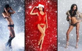 Картинка взгляд, снег, девушки, трусики, шляпа, шубка, лифчики