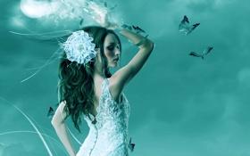 Картинка цветок, взгляд, девушка, бабочки, фантастика, белое, волосы