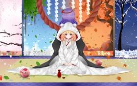 Картинка девушки, времена года, капюшон, ширма, touhou, yasaka kanako, moriya suwako