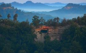 Картинка пейзаж, природа, туман, скала, долина