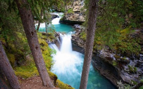 Картинка река, камни, Канада, Canyon, johnstoun, деревья. скалыб, Kanada