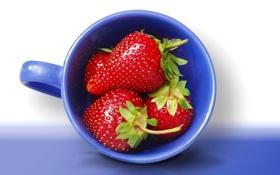 Обои макро, ягоды, земляника, клубника, чашка