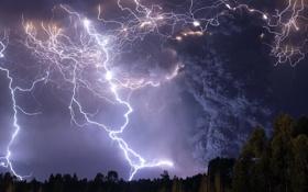Обои trees, thunder, cloudy