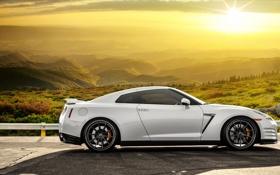Картинка поле, белый, солнце, блики, Nissan, white, GT-R