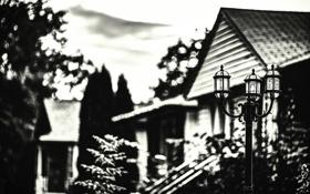 Обои дом, размытие, фонарь