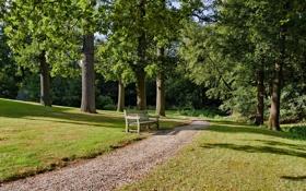 Картинка дорога, парк, скамья