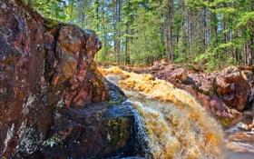 Обои viskonsin, сша, лес, скалы, деревья, река