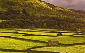 Картинка поле, пейзаж, гора, дома