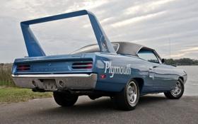 Обои вид сзади, 1970, Plymouth, Muscle car, Superbird, Мускул кар, Плимут