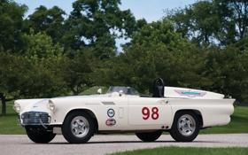 Картинка Experimental, Thunderbird, Car, 1957, Race