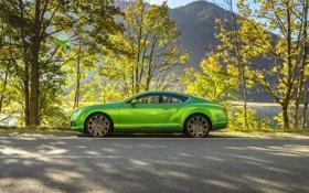 Обои Bentley, Continental, Деревья, Зеленый, Автомобиль, Люкс, Вид сбоку