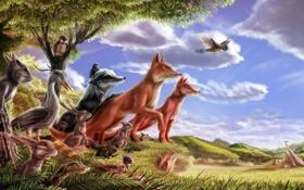 Обои барсук, марал, сказка, лиса, заяц, птица, лес