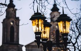 Обои зима, стекло, ветки, город, дерево, здание, фонарь