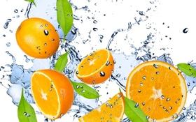 Картинка капли, фрукт, drops, вода, свежесть, жёлтый, брызги