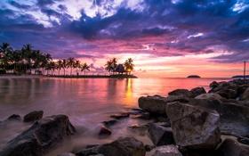 Картинка небо, солнце, облака, закат, камни, пальмы, берег