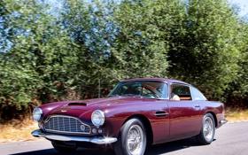 Обои дорога, деревья, Aston Martin, автомобиль, классика, раритет, 1958