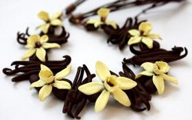 Картинка ваниль, обои, орхидея, ванильные палочки, белый фон, цветы