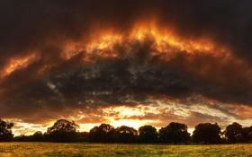 Картинка поле, облака, лучи, деревья, закат, тучи
