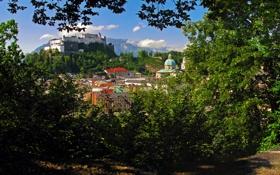 Картинка горы, ветки, город, замок, дома, Австрия, кусты