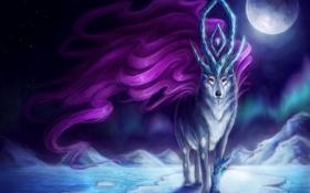 Обои лед, ночь, магия, луна, волк, фэнтези, арт