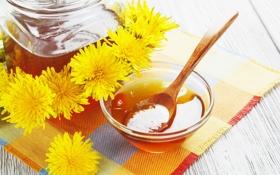 Обои мед, одуванчики, салфетка, цветы