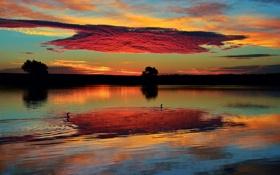 Картинка небо, облака, озеро, утки, Утро, Колорадо, США