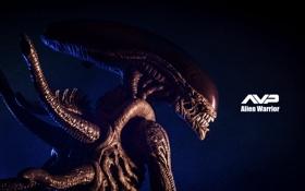 Картинка фон, игрушка, Чужой, статуэтка, Alien, тварь