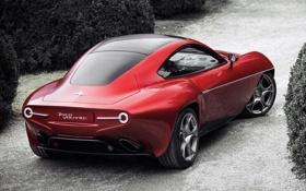 Картинка машина, авто, Alfa Romeo, вид сзади, Touring, Disco Volante
