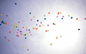Обои небо, солнце, счастье, цветы, воздушные шары