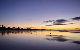 Обои море, пейзаж, закат, Australia, Victoria, Waratah Bay