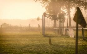 Обои поле, туман, утро, ворота