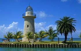 Обои облака, пушка, небо, маяк, пальмы, море