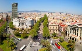 Обои деревья, дороги, дома, площадь, Испания, вид сверху, Барселона