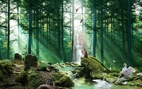 Картинка лес, животные, птицы, река, грибы, водопад, перья