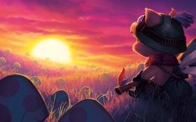 Обои солнце, закат, настроение, грибы, League of Legends, Teemo, Swift Scout