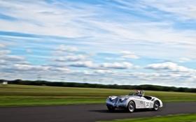Обои Jaguar XK120, гонка, спорт