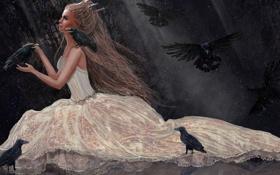 Картинка девушка, снег, птицы, корона, платье, арт, вороны